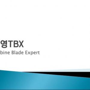 강소기업 자료조사 - 진영TBX